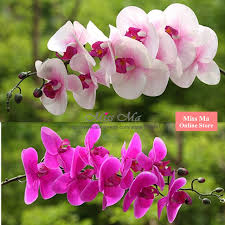 5 pcs 9 flower stem plastic orchids touch moth orchid butterfly