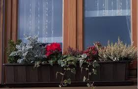 blumenkã sten balkon chestha balkon blumenkasten idee
