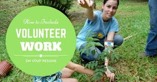Best Volunteer Work For Resume by How To Include Volunteer Work On Your Resume Best Guide Wisestep