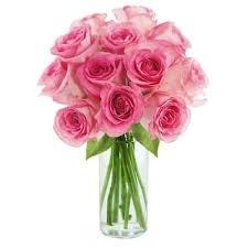 farm fresh flowers fresh flowers shop the best deals for nov 2017 overstock