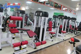 Back Extension Sit Up Bench Gym Equipment Names Roman Chair Hyper Extension 45 Degree Back