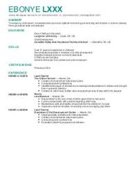 Best Nanny Resume Example Livecareer by Resume Example For A Full Time Job With Essential Information