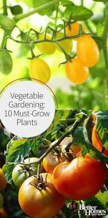 vegetable garden layout what to plant where vegetable garden