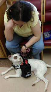 owner training a service dog