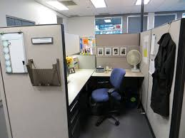 Cute Cubicle Decorating Ideas by Best 25 Chic Cubicle Decor Ideas On Pinterest Office Cubicle