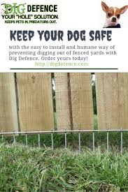 Backyard For Dogs by Best 25 Dog Fence Ideas On Pinterest Fence Ideas Fence And Fencing