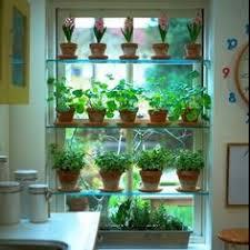 kitchen garden window ideas kitchen garden window ideas rapflava