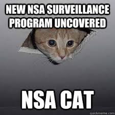 Spy Meme - security memetics the purr fect spy