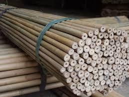 stuoia bamboo rosa pietro e figli bambu curiosità e prodotti in bamboo