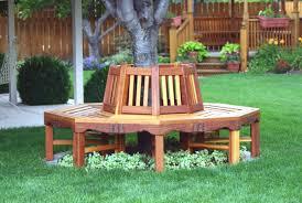 Backyard Tree Ideas 20 Aesthetic And Family Friendly Backyard Ideas