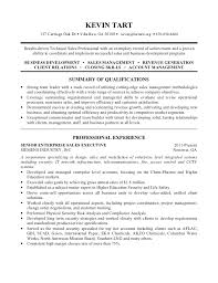 network security resume summary professional cyber security