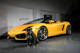 Lamborghini Gallardo Convertible - giallo midas lamborghini gallardo spyder with strasse wheels