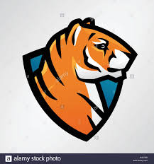 tiger shield sport mascot template football or baseball patch