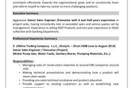 Mechanical Sales Engineer Resume Esl Masters Essay Editing Services Simple Resume For Account