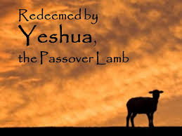 christian seder haggadah passover for believers in yeshua a christian haggadah richly