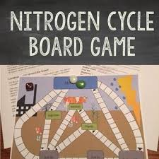 30 best the nitrogen cycle images on pinterest earth science