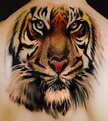best tiger ideas artist design idea for and