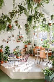 plantes dans une chambre voici les épingles les plus populaires au mois de janvier