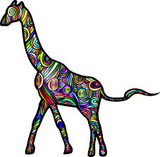 giraffe free pictures pixabay