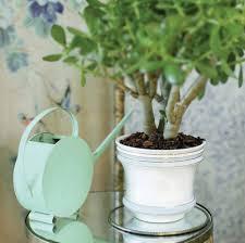 Indoor Planter Pots by Large Indoor Planter Pots Wall Mounted Flower Halls Indoor And