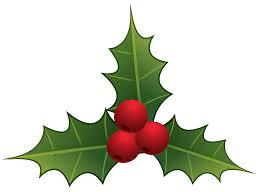 mistletoe hat mistletoe png clipart best web clipart