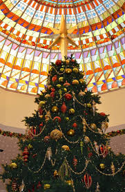 202 best christmas tree oh christmas tree images on pinterest
