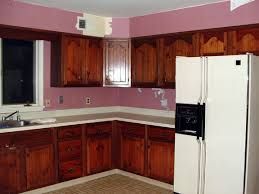 Built In Refrigerator Cabinets Do You Have A Refrigerator Cabinet For A Non Built In Fridge