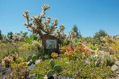 Botanical Gardens Grand Junction Western Colorado Botanical Gardens 641 Struthers Ave Gj Places