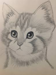 kitten pencil drawing by bbbcomiclover1 d62engg jpg 1024 1371
