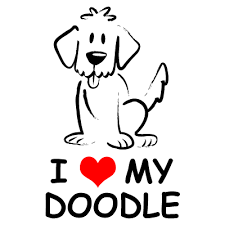 goldendoodle doodles pinterest lovers dog and doodles