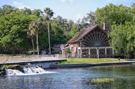 5 fun nature activities in west volusia florida travelling foodie