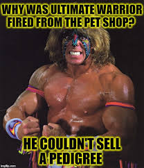 Ultimate Warrior Meme - wwe did you know imgflip