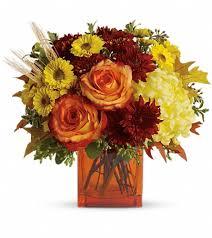 san antonio flowers san antonio florists flowers in san antonio tx garden