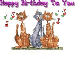 happy birthday singing cat cats singing happy birthday to you animations animation animated