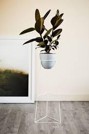 Modern Houseplants by Ivy Muse Plant Stand Wish List Pinterest Ivy Plants And