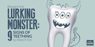 beware the lurking monster 9 sure fire signs of teething to watch