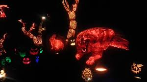 bronx zoo jack o lantern illumination halloween time limitited