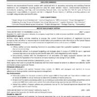 Resume Samples For Data Analyst by Executive Summary And Recent Employment History For Data Analyst