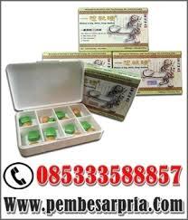 titan gel asli di kalimantan timur 085333588857 pembesar pria