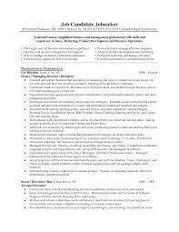 overview resume examples summary statement resume examples to get