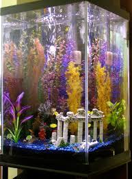 Home Aquarium Decorations Tall Fish Tank Decorations 13 The Minimalist Nyc