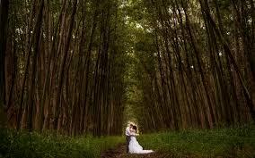 kauai photographers kauai hawaii wedding