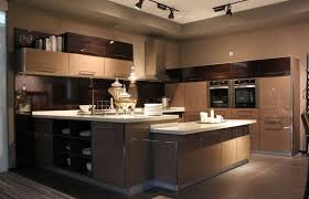 European Style Kitchen Cabinets by Download Contemporary European Kitchen Cabinets Homecrack Com