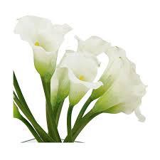 white flower arrangements white flower arrangement el dorado furniture