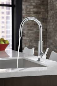 Pulldown Kitchen Faucet 24 Best Flowers Flavors U0026 Faucets Images On Pinterest Bathroom