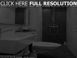 bathroom small bathroom black apinfectologia org living room ideas black and white tile bathroom decorating ideas 10 gorgeous bathrooms with black tile best decor