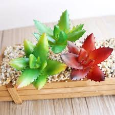 artificial succulents plants garden grass desert artificial plants