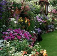 cottage style landscapes and gardens garden pictures black eyed