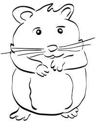 Coloriage  Hamster  Coloriages à imprimer gratuits