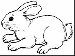 spectacular easter bunny coloring pages printable easter
